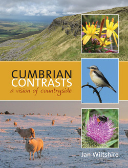 Cumbrian Contrasts, ​A vision of countryside