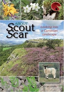 About Scout Scar: Looking into a Cumbria Landscape